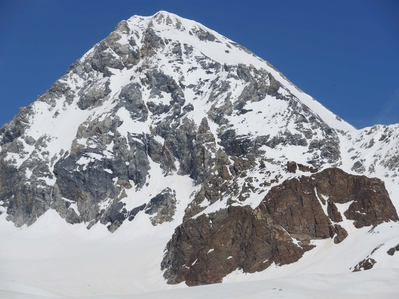 Le Gran Zebru 3851 m  Dernier jour , Point d'orgue du raid. J7-010