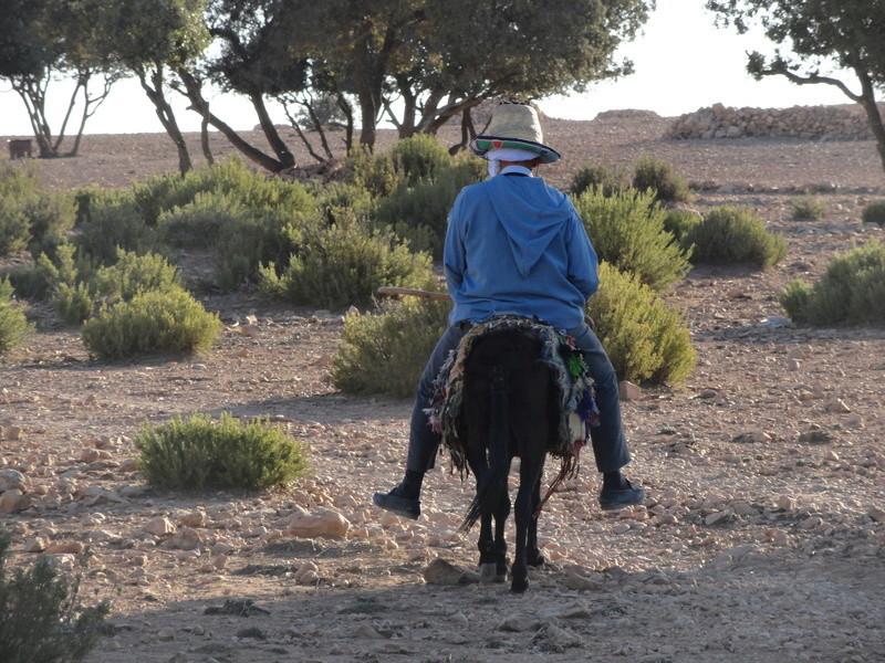 petite virée Marocaine Dsc03415
