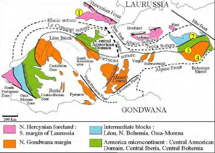 Lioharpes aff. venulosus Devónico inf. Emsiense Palencia Correl10