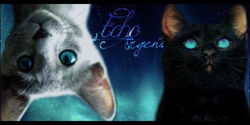 """""""Le Diable a deux cornes, l'orgueil et le mensonge."""" ( feat etoile solitaire ) Echo_d10"""