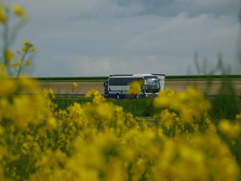 Les cars est bus luxembourgeois (L) Dscn2381