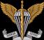 Десантно-штурмові війська
