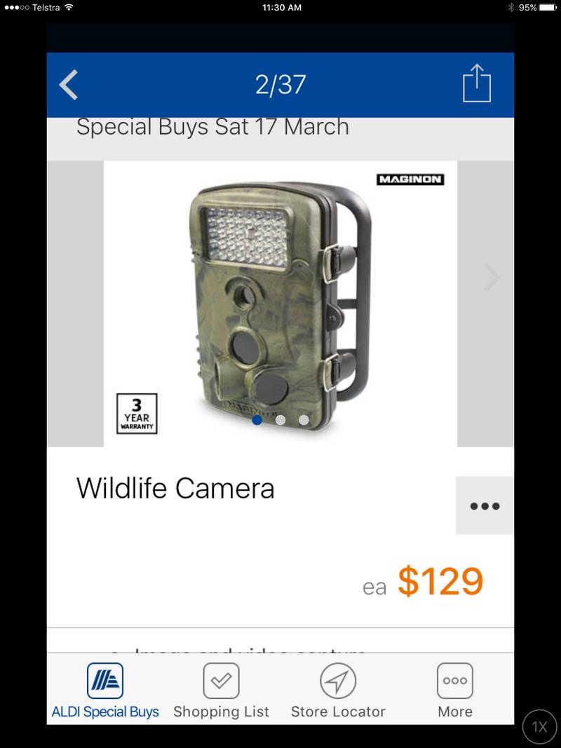 Wildlife Camera Image11