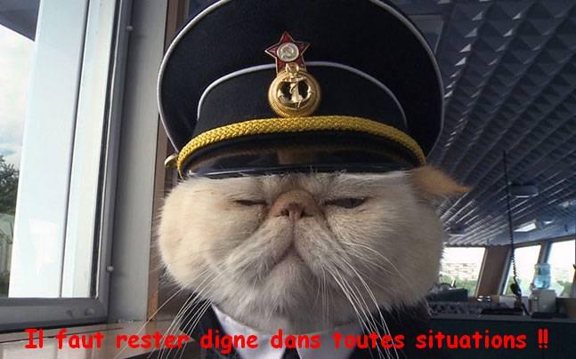 REMORQUEUR DE PORT AERO NAUT AU 1/32  - Page 2 Cat-st10