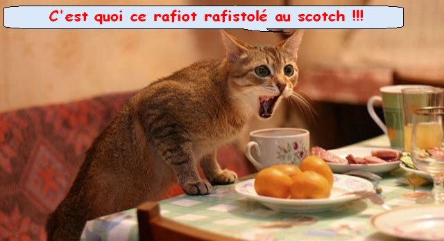 REMORQUEUR DE PORT AERO NAUT AU 1/32  - Page 2 Cat_ob14