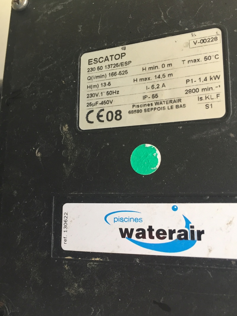 Pompe escatop grillée  Img_3411