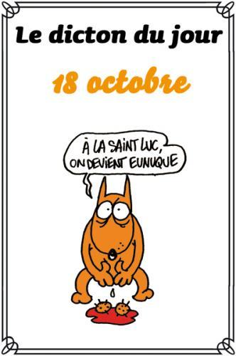 dicton du jour / dicton humour - Page 5 0-a-di10