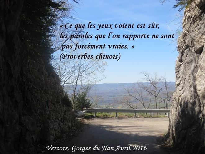 citation du jour/celebres et images de colette - Page 11 Ce_que10