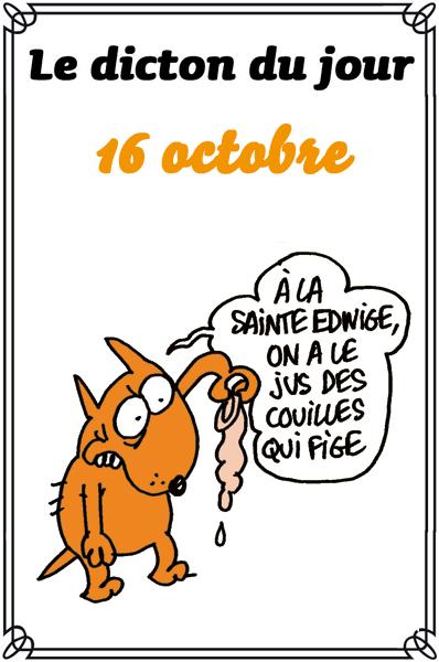 dicton du jour / dicton humour - Page 5 Dicton14