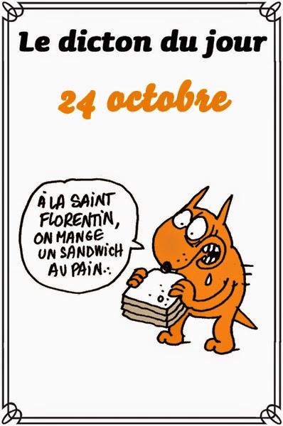 dicton du jour / dicton humour - Page 5 Dicton18