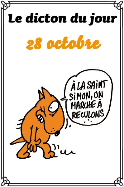 dicton du jour / dicton humour - Page 6 Dicton19