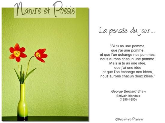 citation du jour/celebres et images de colette - Page 13 Idye10
