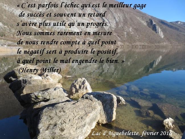 citation du jour/celebres et images de colette - Page 12 L_eche11