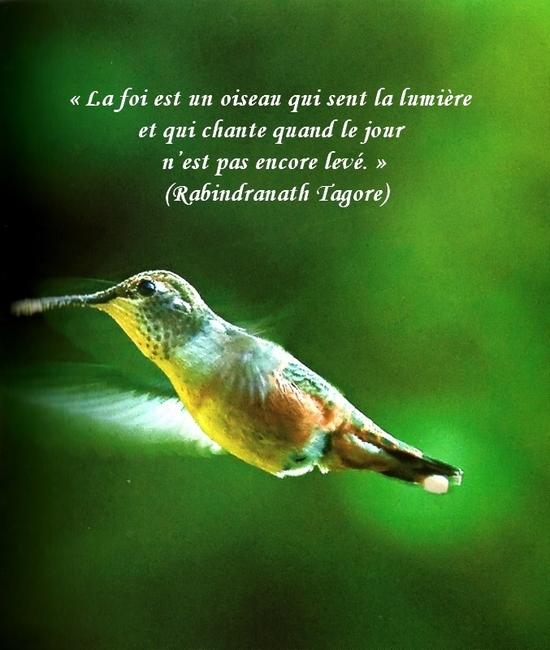 citation du jour/celebres et images de colette - Page 12 La_foi10