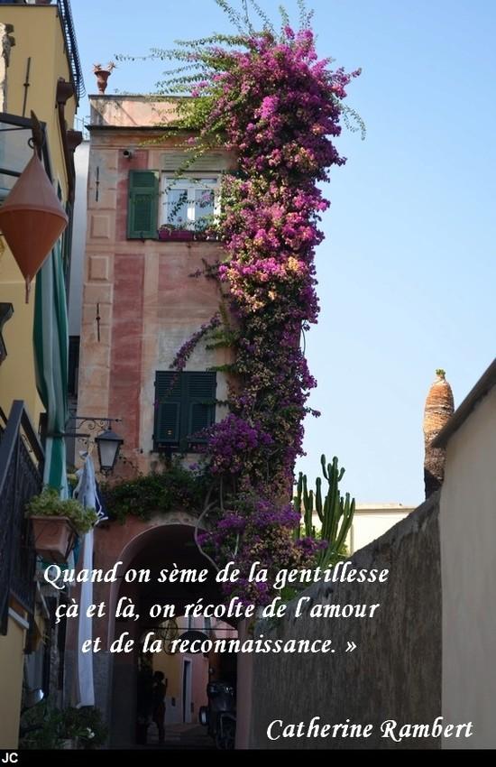 citation du jour/celebres et images de colette - Page 13 La_gen10