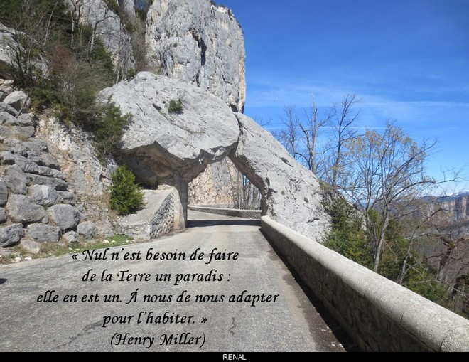 citation du jour/celebres et images de colette - Page 12 La_ter10