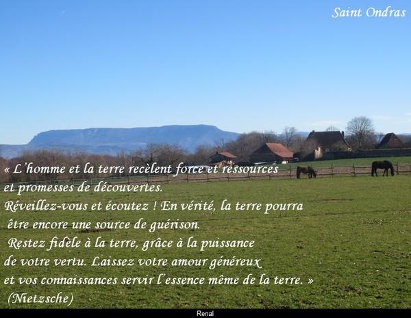 citation du jour/celebres et images de colette - Page 12 La_ter12