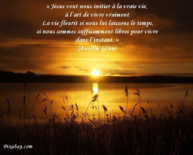 citation du jour/celebres et images de colette - Page 11 La_vie13