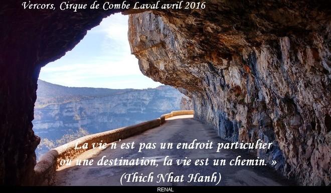 citation du jour/celebres et images de colette - Page 12 La_vie15