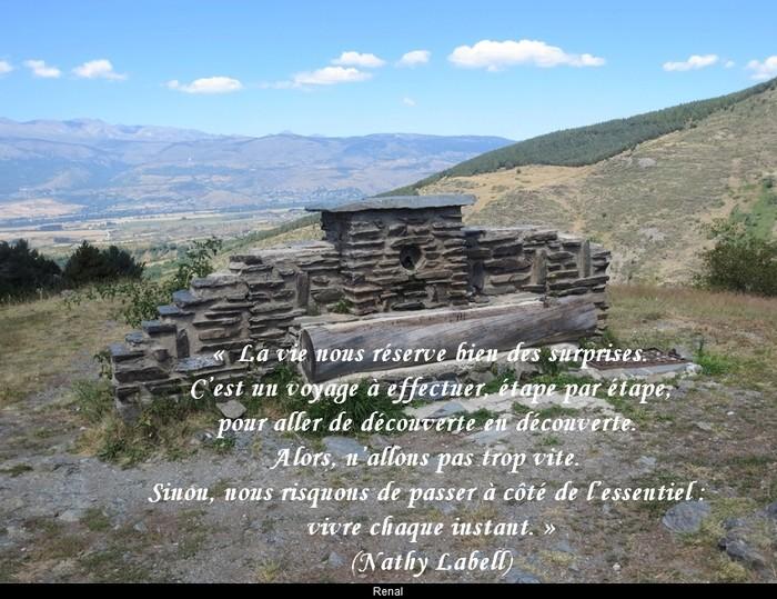 citation du jour/celebres et images de colette - Page 12 La_vie16