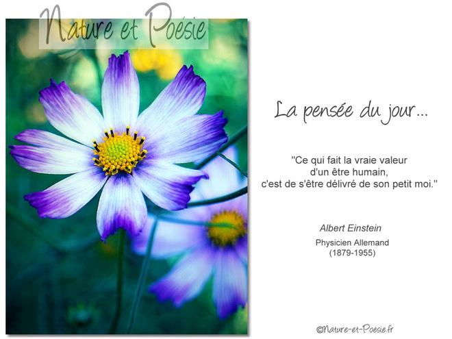 citation du jour / celebre / et images - Page 8 La_vra10