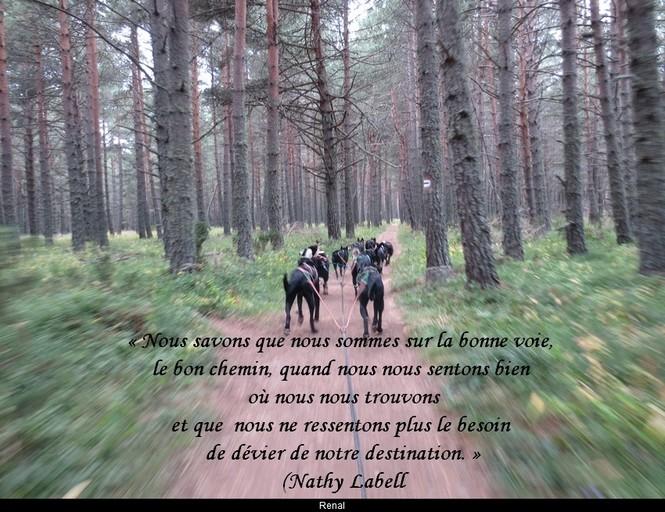 citation du jour/celebres et images de colette - Page 12 Le_bon14