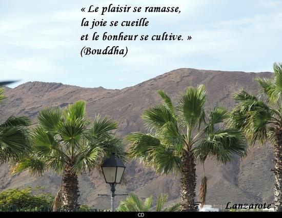 citation du jour/celebres et images de colette - Page 12 Le_bon19