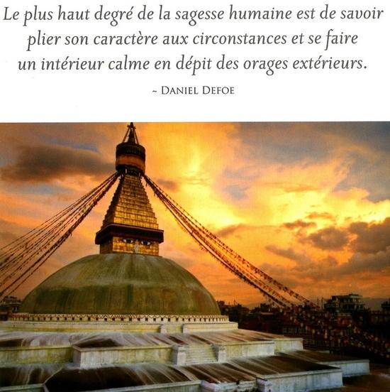 citation du jour/celebres et images de colette - Page 13 Le_plu10