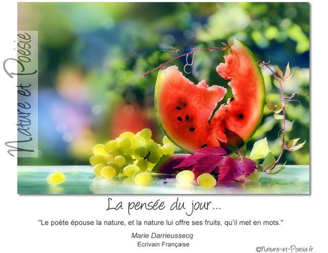 citation du jour/celebres et images de colette - Page 11 Le_poy10