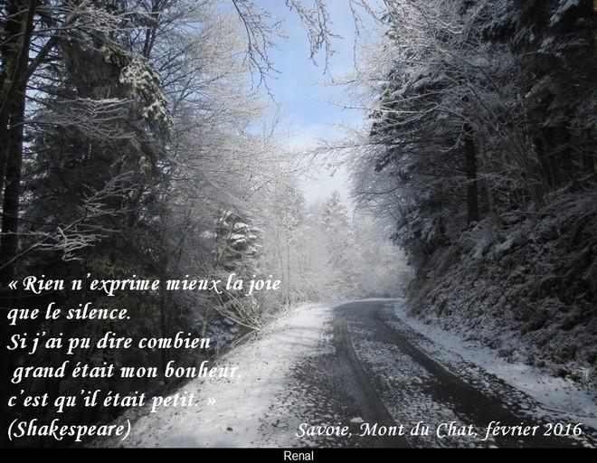 citation du jour/celebres et images de colette - Page 12 Le_sil10