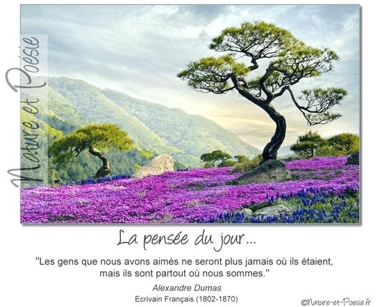 citation du jour/celebres et images de colette - Page 13 Les_ge10