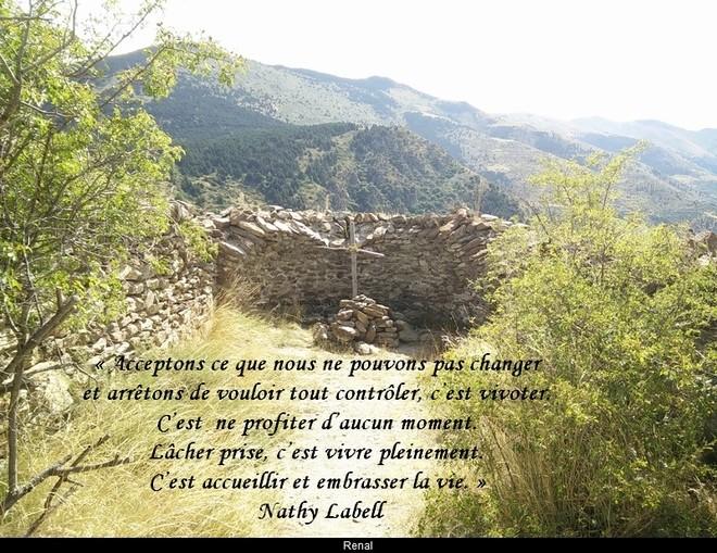 citation du jour/celebres et images de colette - Page 11 Ne_pas10