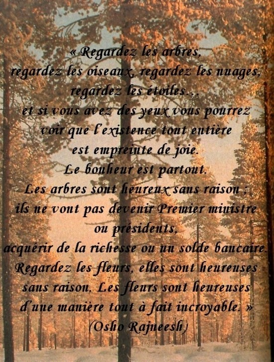 citation du jour/celebres et images de colette - Page 13 Regard10