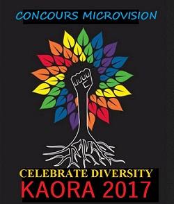 Classement des Pays ayant eu le plus de point au Microvision Microk10