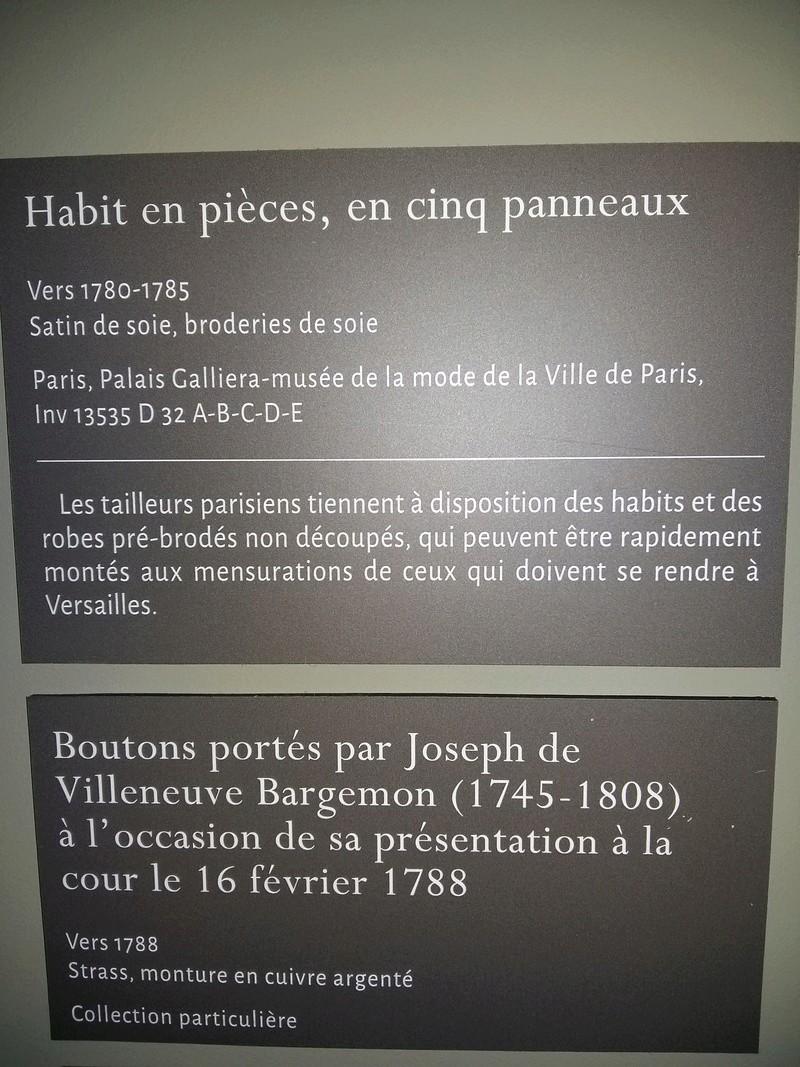 """Exposition """"Visiteurs de Versailles"""" 2017-2018 - Page 2 20171041"""
