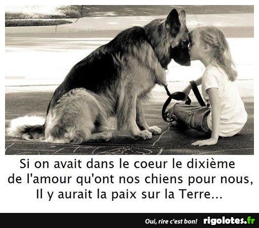 HUMOUR - Page 5 20180442
