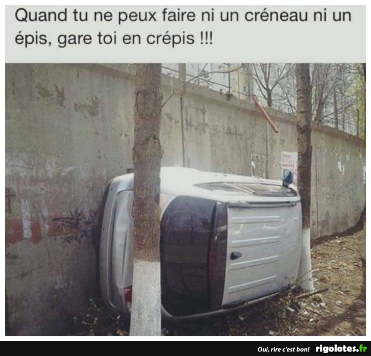HUMOUR - Page 6 20180448