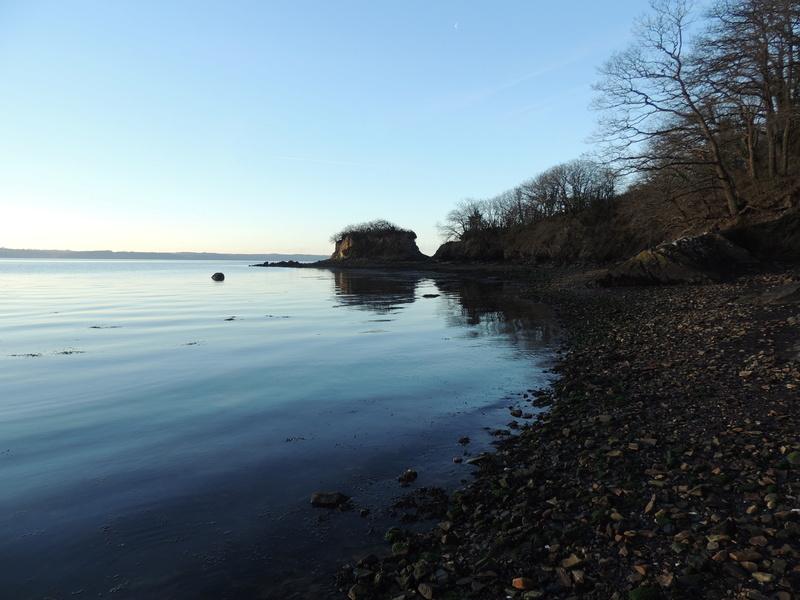 Un matin au bord de l'eau Dscn6810