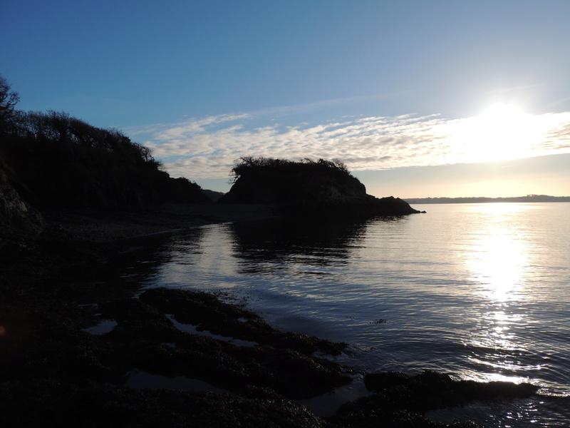 Un matin au bord de l'eau Dscn6814