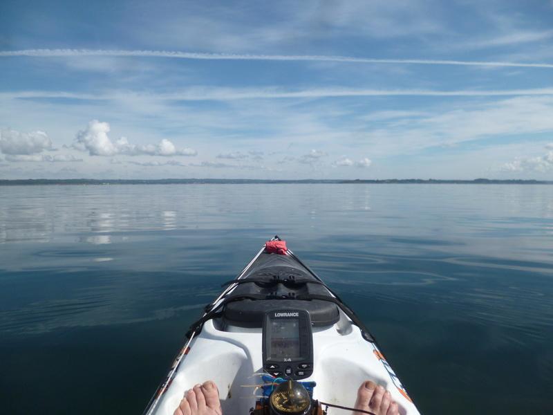 Un matin au bord de l'eau P1010610
