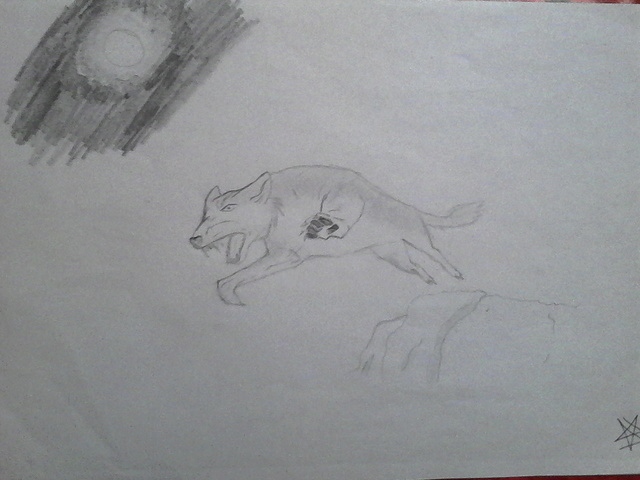 Mes tous premiers dessins :3 2013_l11