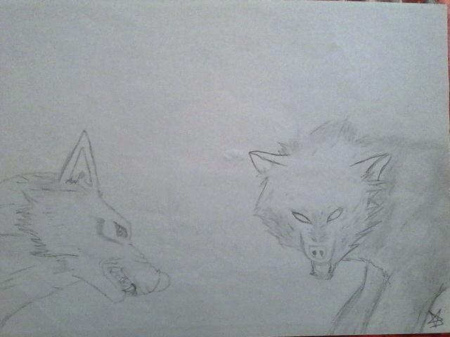 Mes tous premiers dessins :3 2013_l12