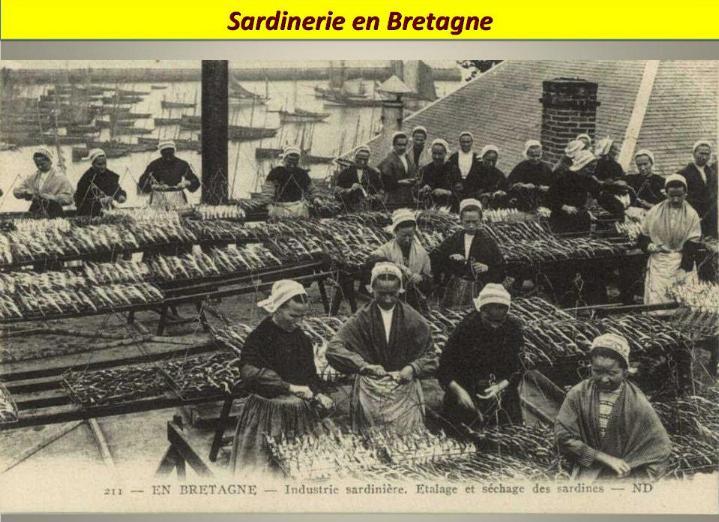 Ouvriers en 1900 - Magnifiques archives * X_1144