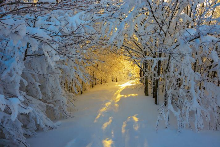 Des Chemins où la randonnée devient un rêve - X_18_i11