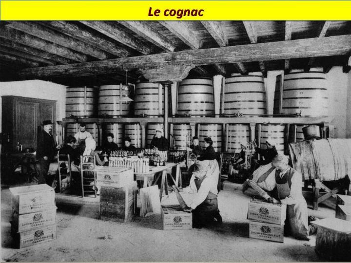 Ouvriers en 1900 - Magnifiques archives * X_2135