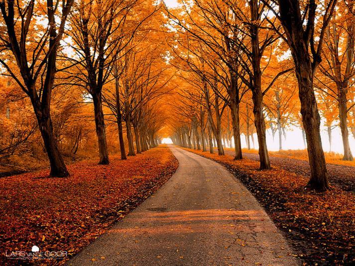 Des Chemins où la randonnée devient un rêve - X_21_p12