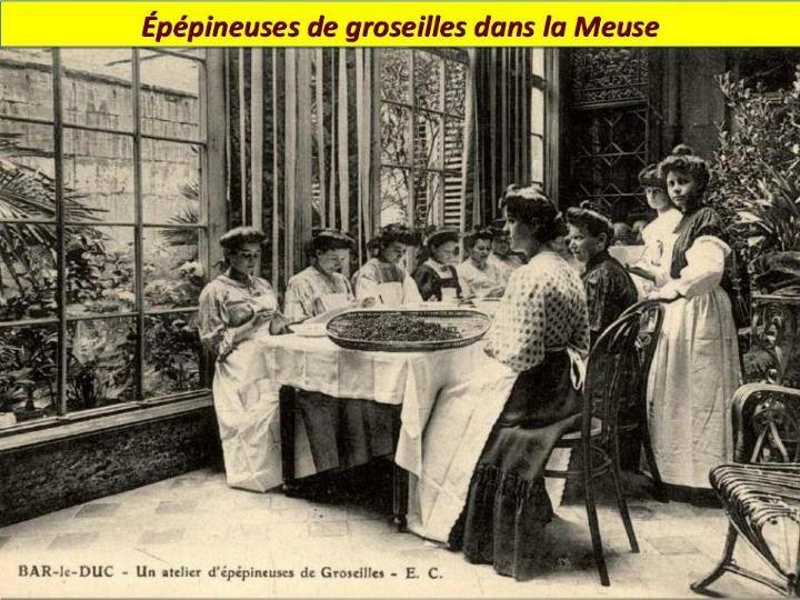 Ouvriers en 1900 - Magnifiques archives * - Page 2 X_2424