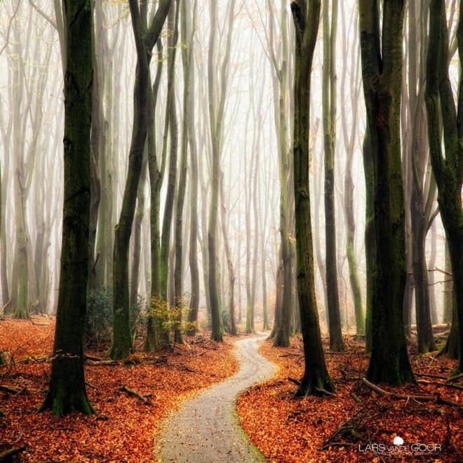 Des Chemins où la randonnée devient un rêve - - Page 2 X_26_s10