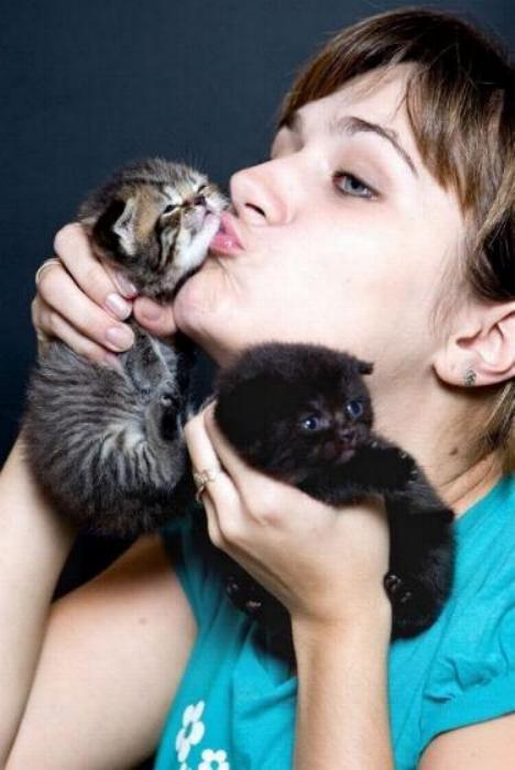Les chats - nos petits compagnons - Page 2 X_3217