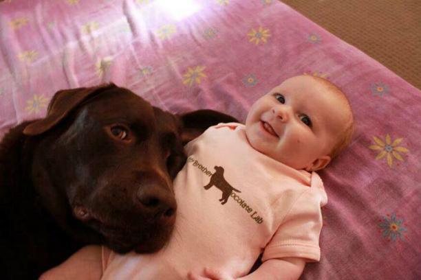 Chiens baby sitter - Page 2 X_5510